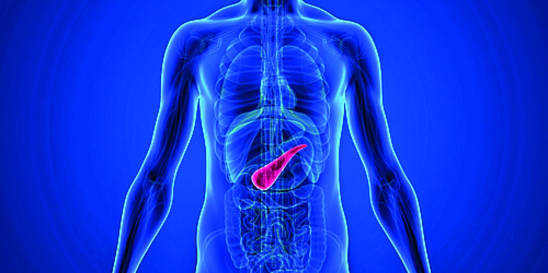 Erkrankung der bauchspeicheldrüse