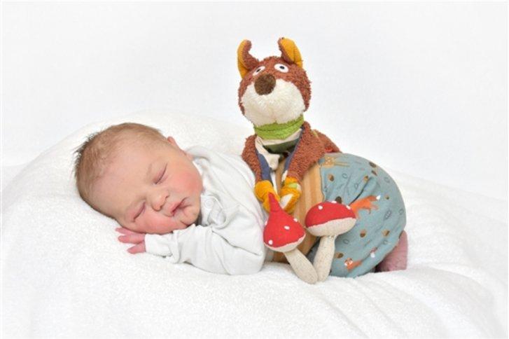 bernward hildesheim babygalerie