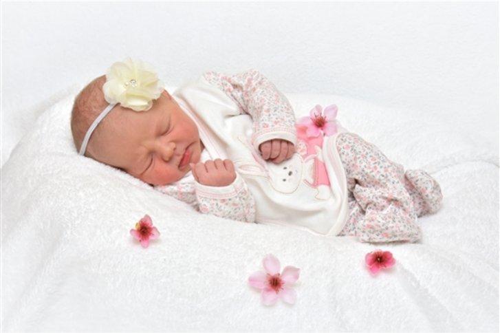 babygalerie hildesheim