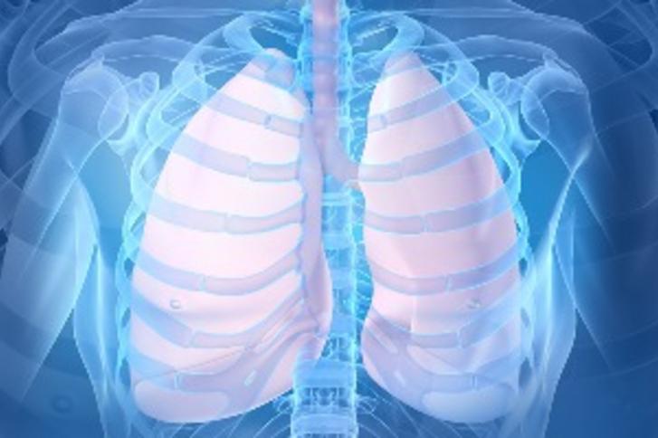Дыхательная Медицина
